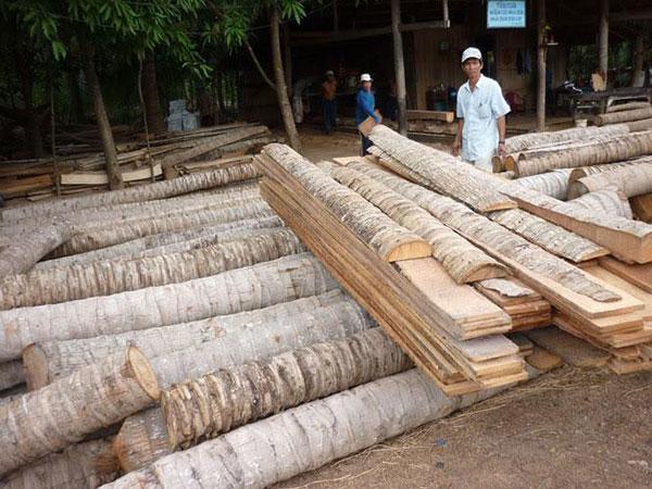 Thân dừa